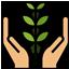 Economic Benefits of Growing Indigo Plant